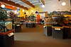 Check out the Insect Zoo - there are lots of interesting critters in there!